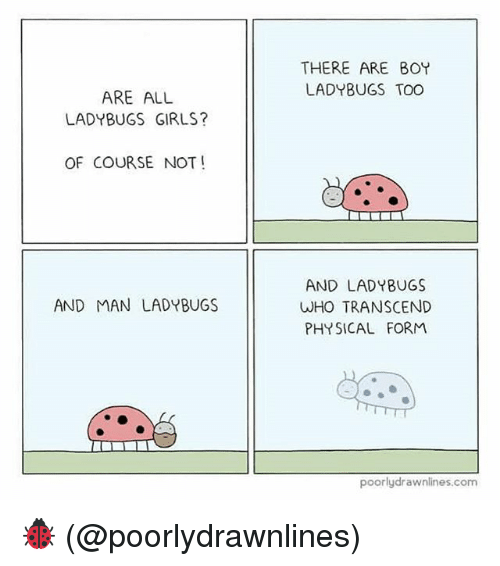 Transcendance: THERE ARE BOY  LADYBUGS TOO  ARE ALL  LADYBUGS GIRLS?  OF COURSE NOT!  AND LAD YBUGS  WHO TRANSCEND  PHYSICAL FORM  AND MAN LADYBUGS  poorlydrawnlines.com 🐞 (@poorlydrawnlines)
