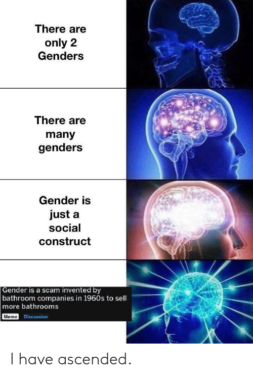 Genders: There are  only 2  Genders  There are  many  genders  Gender is  just a  social  construct  Gender is a scam invented by  bathroom companies in 1960s to sell  more bathrooms  Meme Discussion I have ascended.
