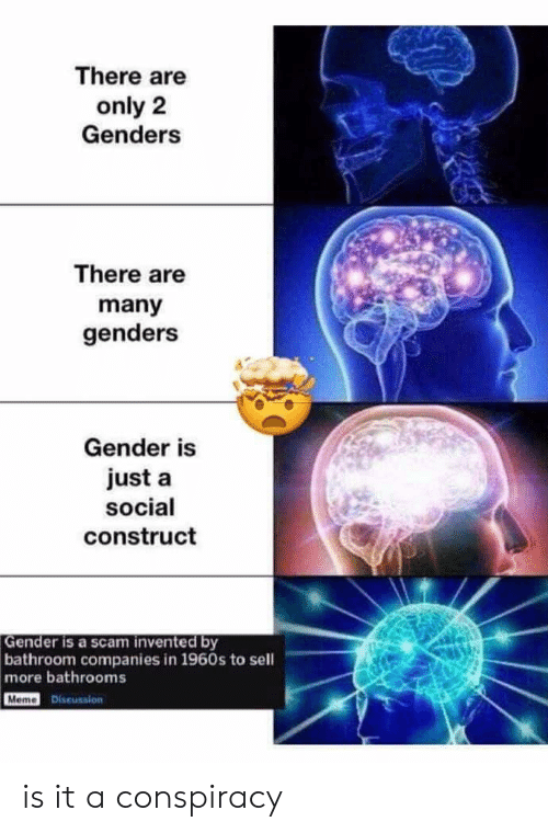 Only 2 Genders: There are  only 2  Genders  There are  many  genders  Gender is  just a  social  construct  Gender is a scam invented by  bathroom companies in 1960s to sell  more bathrooms  Meme Discussion is it a conspiracy