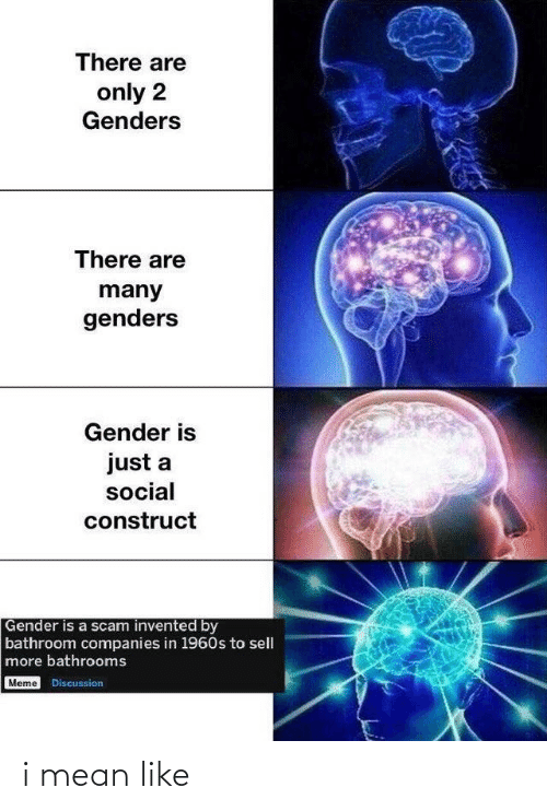 Only 2 Genders: There are  only 2  Genders  There are  many  genders  Gender is  just a  social  construct  Gender is a scam invented by  bathroom companies in 1960s to sell  more bathrooms  Meme Discussion i mean like