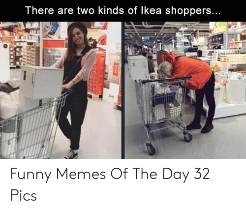 Funny, Memes, and Day: There are two kinds of lkea shoppers Funny Memes Of The Day 32 Pics