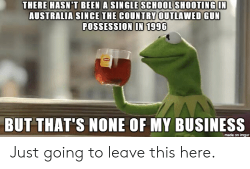 Just Going To Leave This Here: THERE HASN'T BEEN A SINGLE SCHOOL SHOOTING IN  AUSTRALIA SINCE THE COUNTRY OUTLAWED GUN  POSSESSION IN 1996  BUT THAT'S NONE OF MY BUSINESS  made on imgur Just going to leave this here.