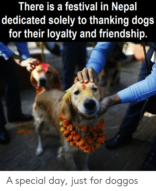 Nepal: There is a festival in Nepal  dedicated solely to thanking dogs  for their loyalty and friendship. A special day, just for doggos