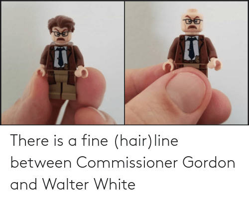 Between: There is a fine (hair)line between Commissioner Gordon and Walter White