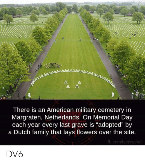 """Memorial: There is an American military cemetery in  Margraten, Netherlands. On Memorial Day  each year every last grave is """"adopted"""" by  a Dutch family that lays flowers over the site  fb.com/factsweird DV6"""