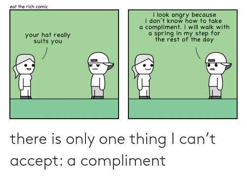 compliment: there is only one thing I can't accept: a compliment