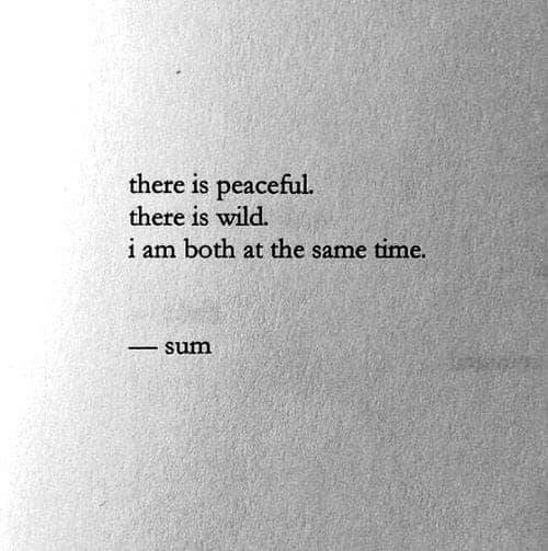 Time, Wild, and Sum: there is peaceful.  there is wild.  i am both at the same time.  sum  0