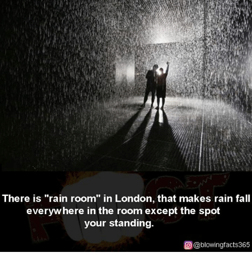 "Exceptation: There is ""rain room"" in London, that makes rain fall  everyw here in the room except the spot  your standing.  ρ@blowingfacts365"