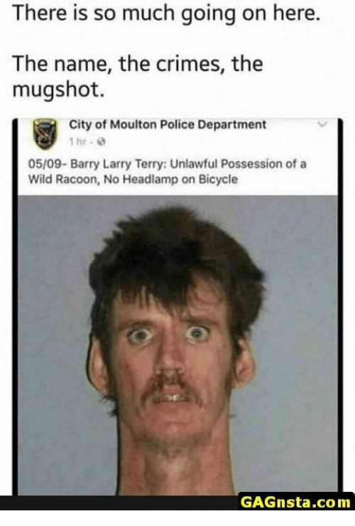 racoon: There is so much going on here.  The name, the crimes, the  mugshot.  City of Moulton Police Department  1hr. 8  05/09- Barry Larry Terry: Unlawful Possession of a  Wild Racoon, No Headlamp on Bicycle  GAGnsta.com