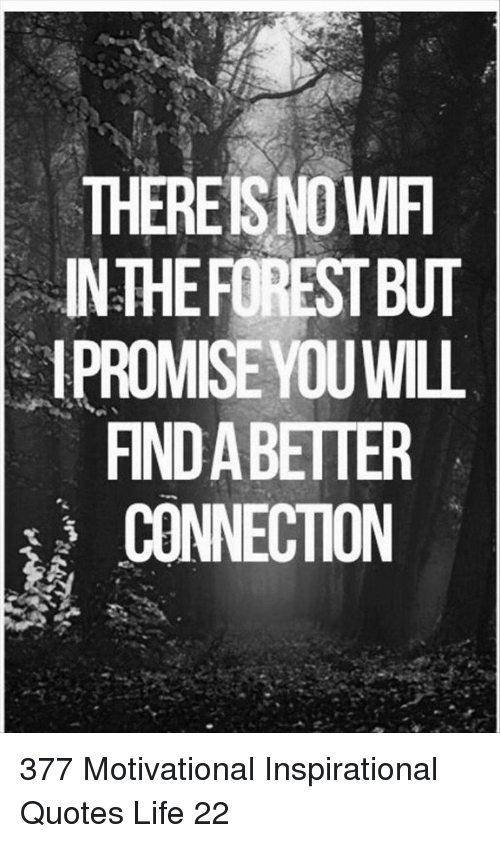 Broomstick: THEREISNO WIF  INTHEFOREST BUT  1PROMISE YOUWILL  FIND A BETTER  CONNECTION 377 Motivational Inspirational Quotes Life 22
