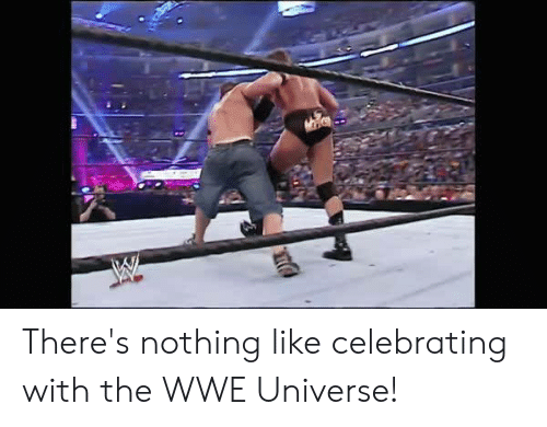 World Wrestling Entertainment: There's nothing like celebrating with the WWE Universe!