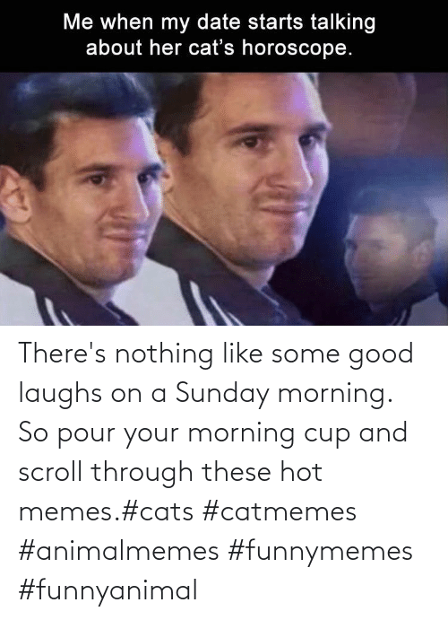 cup: There's nothing like some good laughs on a Sunday morning.  So pour your morning cup and scroll through these hot memes.#cats #catmemes #animalmemes #funnymemes #funnyanimal
