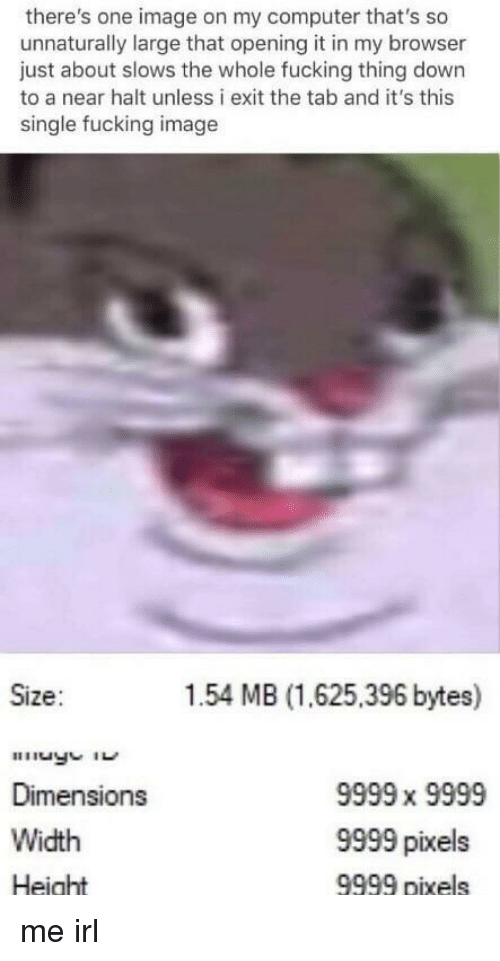 bytes: there's one image on my computer that's so  unnaturally large that opening it in my browser  just about slows the whole fucking thing down  to a near halt unless i exit the tab and it's this  single fucking image  Size:  1.54 MB (1.625,396 bytes)  Dimensions  Width  Height  9999 x 9999  9999 pixels  9999 pixels me irl
