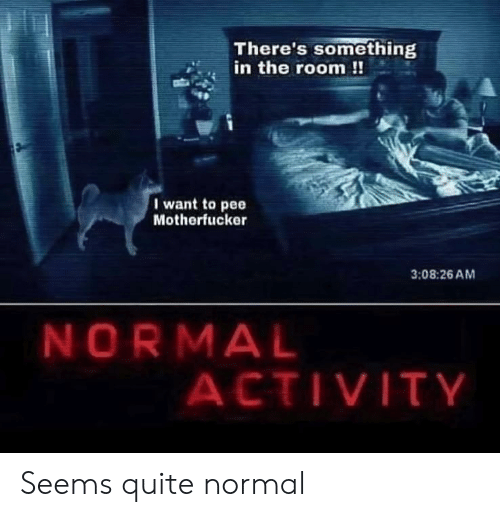 Quite, Normal, and The Room: There's something  in the room !!  I want to pee  Motherfucker  3:08:26 AM  NORMAL  ACTIVITY Seems quite normal