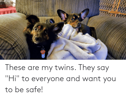 """Twins: These are my twins. They say """"Hi"""" to everyone and want you to be safe!"""