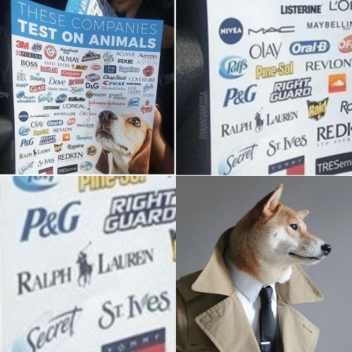 Animals, Avon, and Listerine: THESE COMPANIES  TEST ON ANIMALS  LISTERINE LO  NIVEA A c MAYBELLIN  3M 409 Aquefresth  PURINA  OIAY OralBF  JOfs Prme Sol REVLON  ACUVUE Aveeno  ALMAY ARMORALWICK AXE AVON  BOSS  BROWNBIC meeaCoppertone Caress  BAND-AID Colgate  Clear  IDEA DownyDove prann CLOROX ChapStick COVERGIRL  IAMS GLAD GeG ARMAN  Kehe DeG Crest DIESEL  RIGHT  GUARD  Elizabeth Arden ESTEE  LAUDER  works  heads  shoukders  GARNIER green  P&G  Dial Gillette  IVORY  LISTERINE LOREAL ohwon-gohnion  MAYBELLINE Old Spice  MIVEA  OIAV OralB OFF  oA Pne-Sol REVLON PANTENE  P&G GUARD  RALPH LAURENRa R  Seare S Ves REDI  TRESEM  Pampers  RIGHT  Seare S ves REDKEN de  TRESemme SCOPE  RALPH LAUREN aid Rogaine  TH AVEN  THAVENGE NYC  P&G BIGHT  GUARD  RALPH LAUREN  Secret SE IVes  VSSENVANNA