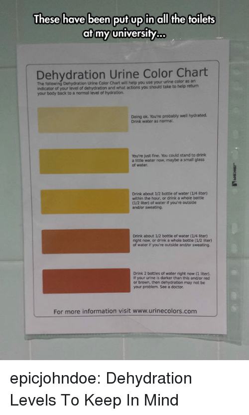 Hydration: These have been put up in all the toilets  at my university.  Dehydration Urine Color Chart  The following Dehydration Urine Color Chart will heip you use your urine color as an  indicator of your level of dehydration and what actions you should take to help return  your body back to a normal level of hydration  Doing ok. You're probably well hydrated.  Drink water as normal.  You're just fine. You could stand to drink  a little water now, maybe a small glass  of water  Drink about 1/2 bottie of water (1/4 liter)  within the hour, or drink a whole bottle  (1/2 liter) of water if you're outside  and/or sweating  Drink about 1/2 bottle of water (1/4 liter)  right now, or drink a whole bottle (1/2 liter)  water if you're outside and/or sweating  Drink 2 bottles of water right now (1 liter).  If your urine is darker than this and/or red  or brown, then dehydration may not be  your problem. See a doctor  For more information visit www.urinecolors.com epicjohndoe:  Dehydration Levels To Keep In Mind