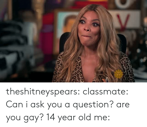 I Ask You: theshitneyspears: classmate: Can i ask you a question? are you gay? 14 year old me: