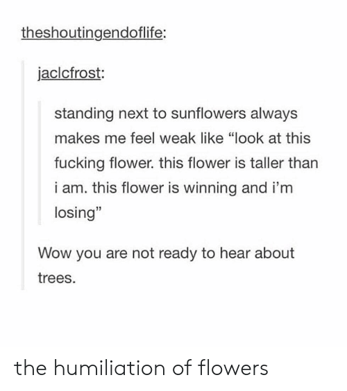 "Fucking, Wow, and Flower: theshoutingendoflife:  jaclcfrost:  standing next to sunflowers always  makes me feel weak like ""look at this  fucking flower. this flower is taller tharn  i am. this flower is winning and i'm  losing""  15  Wow you are not ready to hear about  trees. the humiliation of flowers"