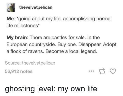 Life, Brain, and Ravens: thevelvetpelican  Me: going about my life, accomplishing normal  life milestones*  My brain: There are castles for sale. In the  European countryside. Buy one. Disappear. Adopt  a flock of ravens. Become a local legend.  Source: thevelvetpelican  56,912 notes ghosting level: my own life