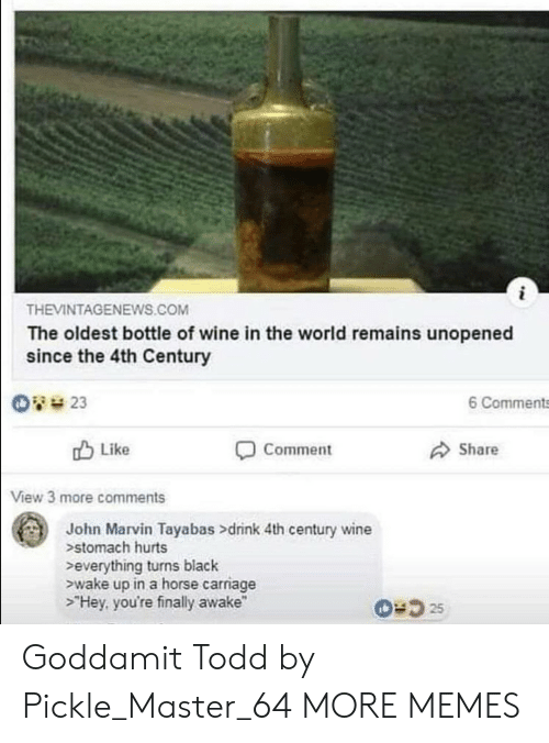 """Dank, Memes, and Target: THEVINTAGENEWS.COM  The oldest bottle of wine in the world remains unopened  since the 4th Century  6 Comments  Like  Comment  Share  View 3 more comments  John Marvin Tayabas >drink 4th century wine  stomach hurts  everything turns black  ewake up in a horse carriage  >""""Hey, you're finally awake"""" Goddamit Todd by Pickle_Master_64 MORE MEMES"""