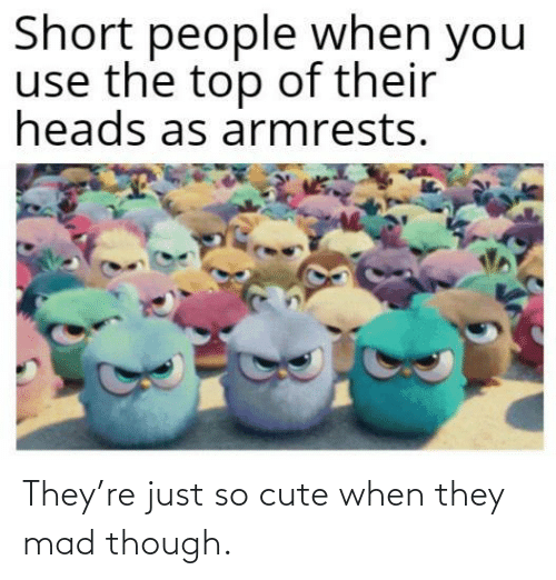 Mad: They're just so cute when they mad though.