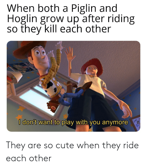 each other: They are so cute when they ride each other