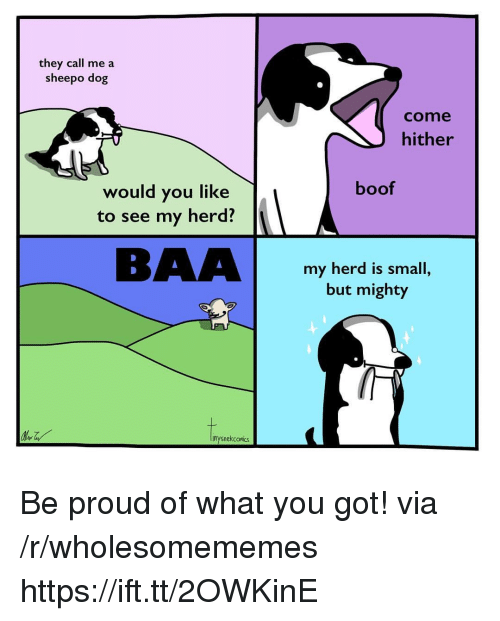 Boof: they call me a  sheepo dog  come  hither  boof  would you like  to see my herd?  BAAbomi  my herd is small,  but mighty  inysnekcomiks Be proud of what you got! via /r/wholesomememes https://ift.tt/2OWKinE