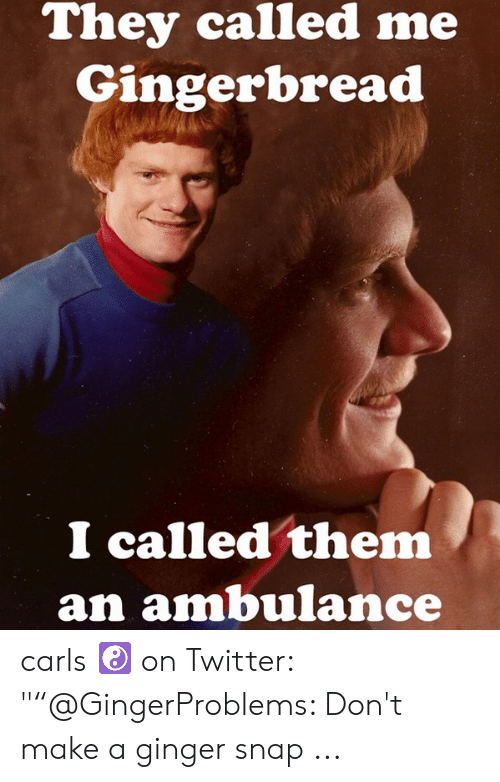 """Ginger Snap Meme: They called me  Gingerbread  I called them  an ambulance carls ☯ on Twitter: """"""""@GingerProblems: Don't make a ginger snap ..."""