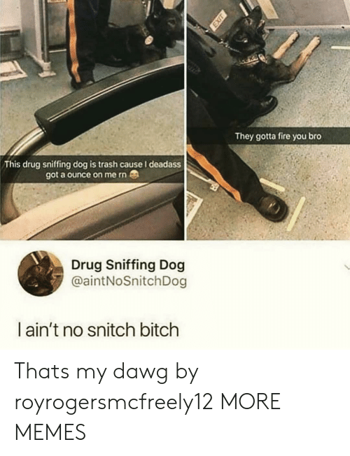 ounce: They gotta fire you bro  This drug sniffing dog is trash cause I deadass  got a ounce on me rn  Drug Sniffing Dog  @aintNoSnitchDog  l ain't no snitch bitch Thats my dawg by royrogersmcfreely12 MORE MEMES