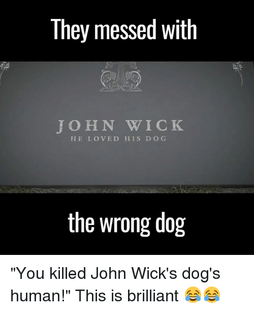"""wicks: They messed With  JOHN WICK  HE LOVED HIS D O G  the wrong dog """"You killed John Wick's dog's human!"""" This is brilliant 😂😂"""