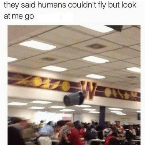 Fly, They, and Look: they said humans couldn't fly but look  at me go  W