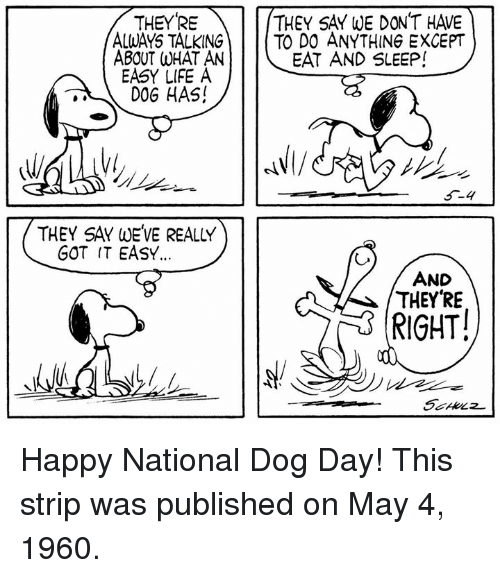 Dog Day: THEYRE  ALWAYS TALKING  ABOUT WHAT AN  EASY LIFE A  D0G HAS!  THEY SAY WE DON'T HAVE  TO DO ANYTHING EXCEPT  EAT AND SLEEP!  THEY SAY WEVE REALLY  GOT IT EASY.  AND  THEYRE  RIGHT! Happy National Dog Day! This strip was published on May 4, 1960.