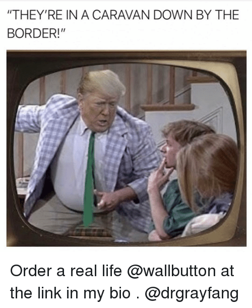 """caravan: """"THEY'RE IN A CARAVAN DOWN BY THE  BORDER!"""" Order a real life @wallbutton at the link in my bio . @drgrayfang"""