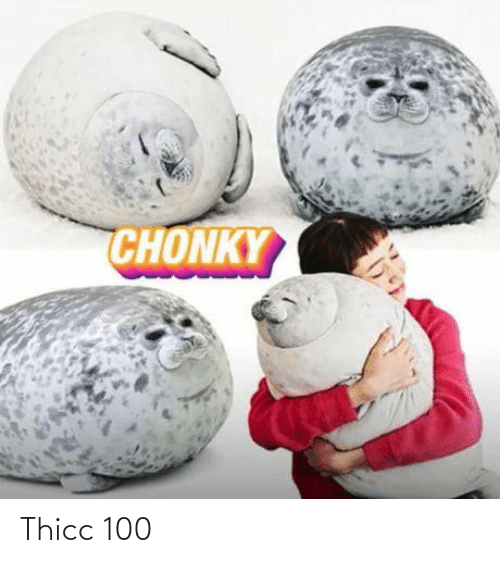 thicc: Thicc 100