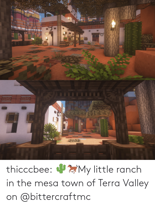 Ranch: thicccbee: 🌵🐎My little ranch in the mesa town of Terra Valley on  @bittercraftmc
