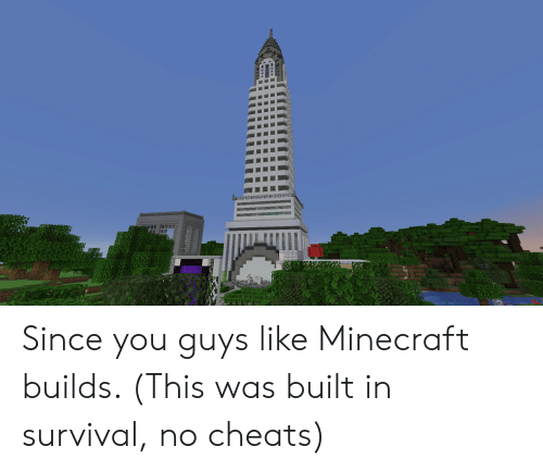 THIKERARRLI19F Since You Guys Like Minecraft Builds This Was Built