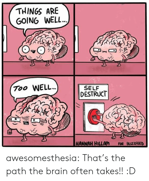 Buzzfeed: THINGS ARE  GOING WELL..  Too WELL.)  SELF  DESTRUCT  HANNAH HILLAM  FOR BUZZFEED awesomesthesia:  That's the path the brain often takes!! :D