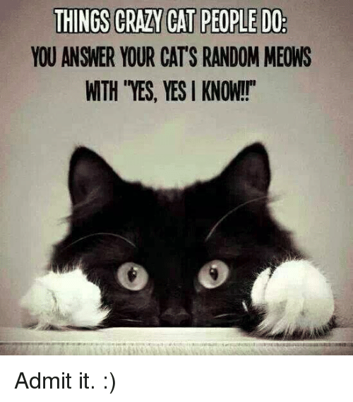 "crazy cats: THINGS CRAZY CAT PEOPLEDO  YOU ANSWER YOUR CATS RANDOM MEONS  WTH YES, YES KNOW!!"" Admit it. :)"