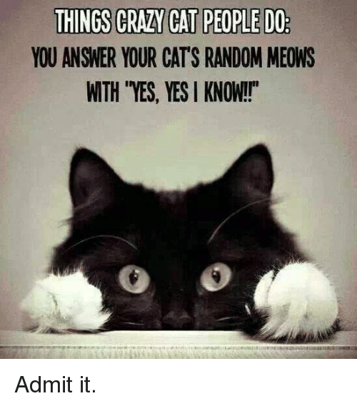 "crazy cats: THINGS CRAZY CAT PEOPLEDO  YOU ANSWER YOUR CATS RANDOM MEONS  WTH YES, YES KNOW!!"" Admit it."