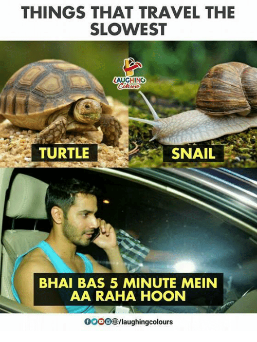 Travel, Turtle, and Indianpeoplefacebook: THINGS THAT TRAVEL THE  SLOWEST  TURTLE  SNAIL  BHAI BAS 5 MINUTE MEIN  AA RAHA HOON  OOOO /laughingcolours