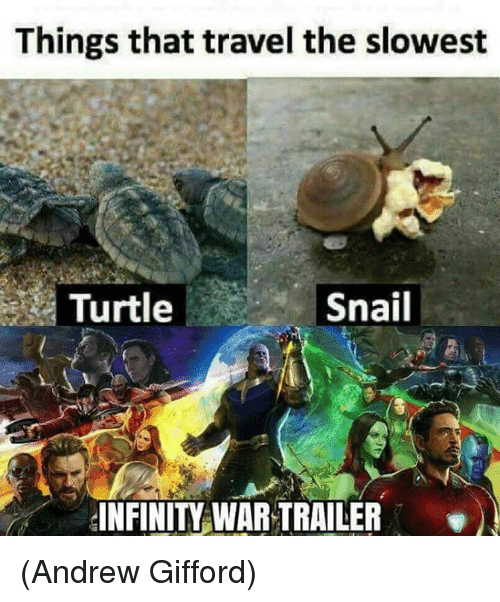 Memes, Infinity, and Travel: Things that travel the slowest  Turtle  Snail  INFINITY WAR TRAILER (Andrew Gifford)