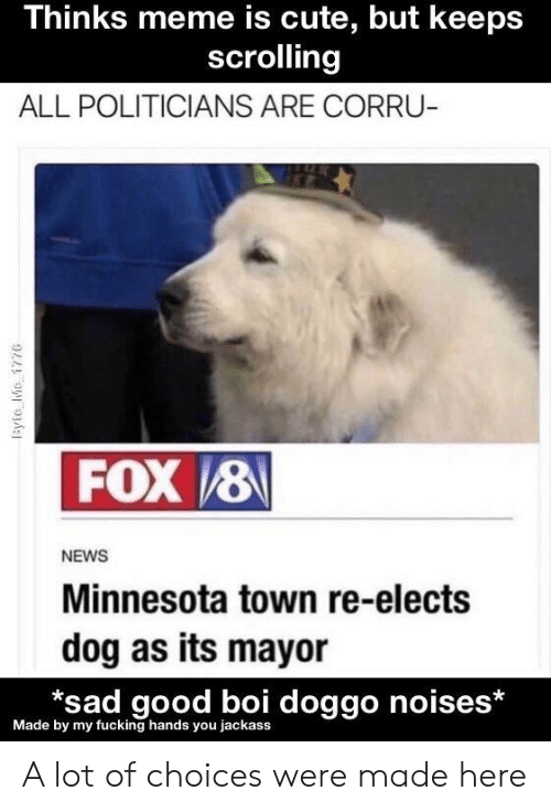 Cute, Fucking, and Meme: Thinks meme is cute, but keeps  scrolling  ALL POLITICIANS ARE CORRU-  FOX8  NEWS  Minnesota town re-elects  dog as its mayor  *sad good boi doggo noises*  Made by my fucking hands you jackass  1syie Me 177G A lot of choices were made here