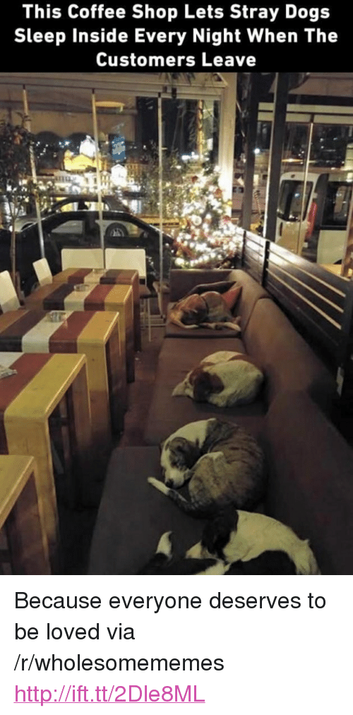 """Dogs, Coffee, and Http: This Coffee Shop Lets Stray Dogs  Sleep Inside Every Night When The  Customers Leave <p>Because everyone deserves to be loved via /r/wholesomememes <a href=""""http://ift.tt/2Dle8ML"""">http://ift.tt/2Dle8ML</a></p>"""