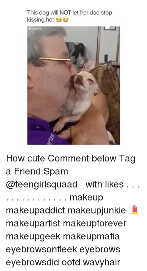 Dad Stop: This dog will NOT let her dad stop  kissing her How cute Comment below Tag a Friend Spam @teengirlsquaad_ with likes . . . . . . . . . . . . . . . makeup makeupaddict makeupjunkie 💄 makeupartist makeupforever makeupgeek makeupmafia eyebrowsonfleek eyebrows eyebrowsdid ootd wavyhair