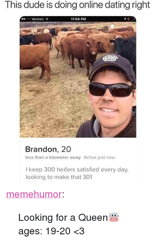 "Online dating: This dude is doing online dating right  ooo Verizon  11:04 PM  Brandon, 20  less than a kilometer away Active just now  l keep 300 heifers satisfied every day,  looking to make that 301 <p><a href=""http://memehumor.net/post/173445158809/looking-for-a-queen-ages-19-20-3"" class=""tumblr_blog"">memehumor</a>:</p>  <blockquote><p>Looking for a Queen🐮 ages: 19-20 &lt;3</p></blockquote>"