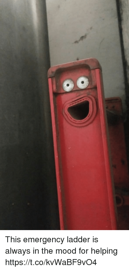 Mood, Faces-In-Things, and Emergency: This emergency ladder is always in the mood for helping https://t.co/kvWaBF9vO4