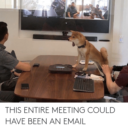 meeting: THIS ENTIRE MEETING COULD HAVE BEEN AN EMAIL