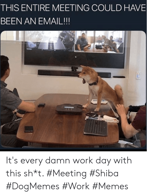 Work Memes: THIS ENTIRE MEETING COULD HAVE  BEEN AN EMAIL!!! It's every damn work day with this sh*t. #Meeting #Shiba #DogMemes #Work #Memes