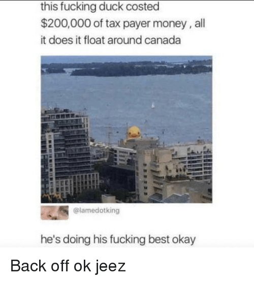 Bailey Jay, Fucking, and Money: this fucking duck costed  $200,000 of tax payer money, all  it does it float around canada  @lamedotking  he's doing his fucking best okay Back off ok jeez